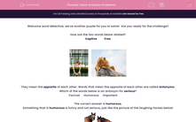 'Solve Antonym Problems' worksheet