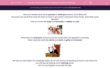 'Find the Synonym Including Homophone Spellings' worksheet